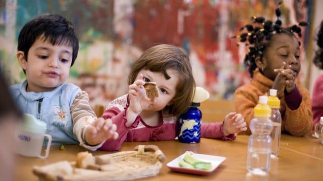 Småbørnsområdet – undervisning til fagprofessionelle