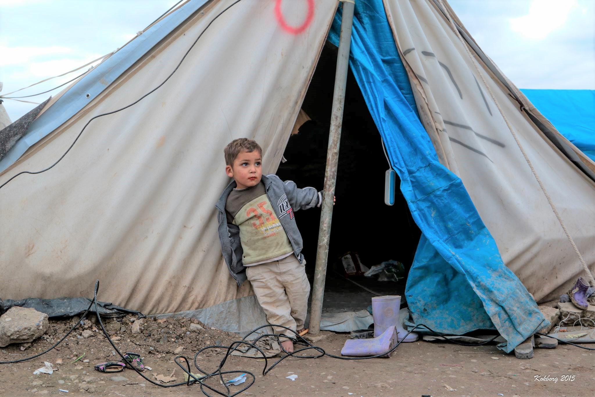 Flygtninge og indvandrere  i Danmark, skal ikke behandles som ofre